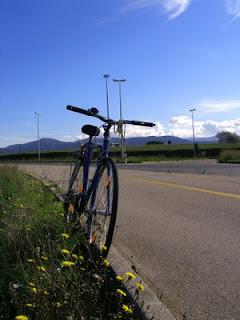 Frascati in bicicletta