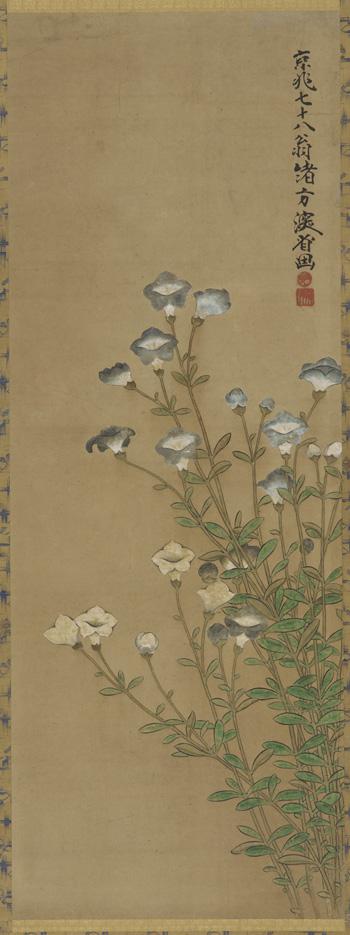 [Blue+and+white+flowers+slender+stalks+Ogata+kenzan.jpg]