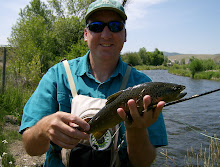 WEBER RIVER BROWN