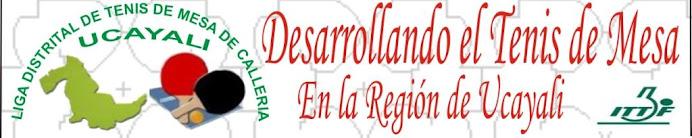 LIGA DISTRITAL DE TENIS DE MESA DE CALLERIA-UCAYAL