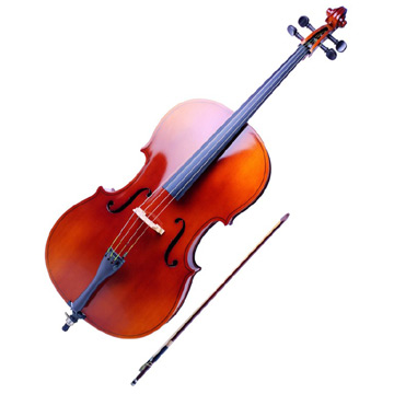 Image result for alat musik biola