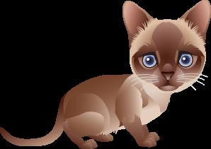 gatos decoupage