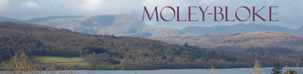 Moley-Bloke