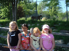 Field Trip at the Zoo