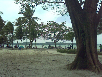 Changi Beach Along Park Nicholl Drive