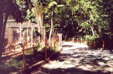 Um aspecto da área central do Jardim Zoológico de Bauru