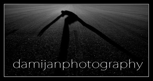 damijanphoto