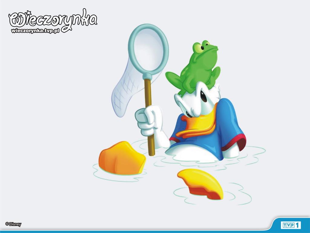 http://2.bp.blogspot.com/_Y9jlk7KvkBA/TBA_iGUL6GI/AAAAAAAABwU/HMkYjYmmR8k/s1600/Donald%20Duck%201.jpg