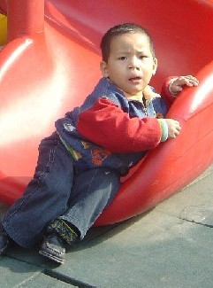 Z  November '06