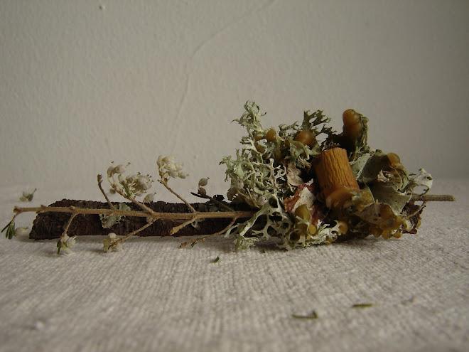 Natureza ao Peito 18