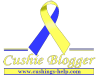 Cushie Blogger Tag