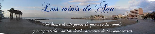 LAS MINIS DE ANA
