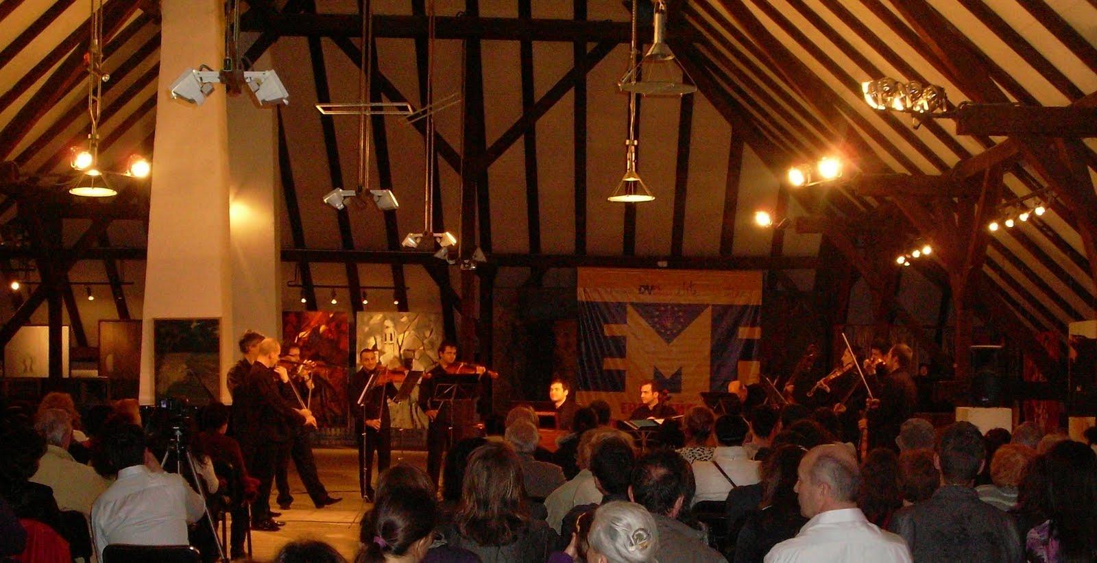 Studio primo chamber orchestra for Chambre orchestra