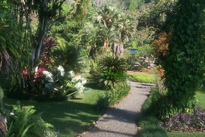 Jardim de Zymm