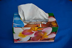 Frangipani on tissue box