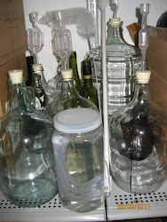 A Collection of Glass Containers