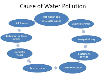 As a conclusion, the main causes of water pollution is man-made. Some ...