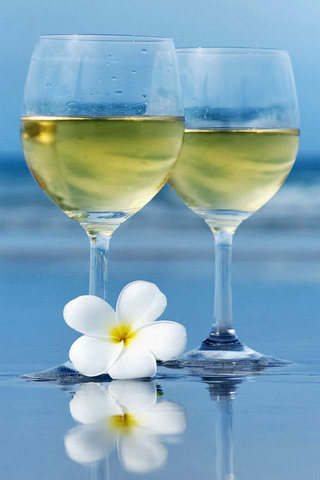 [Hình: White-Wine-Beach-Plumeria-20100221.jpg]