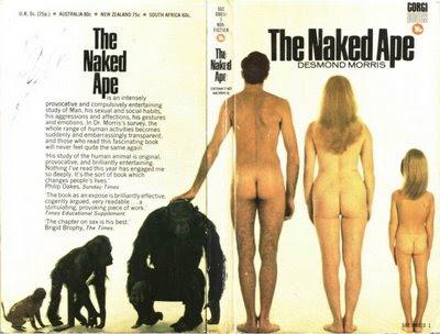 วิวัฒนาการของมนุษย์