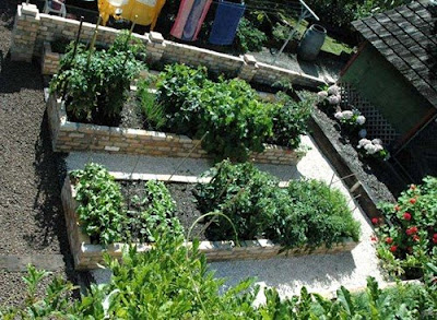 to vegetable gardening,