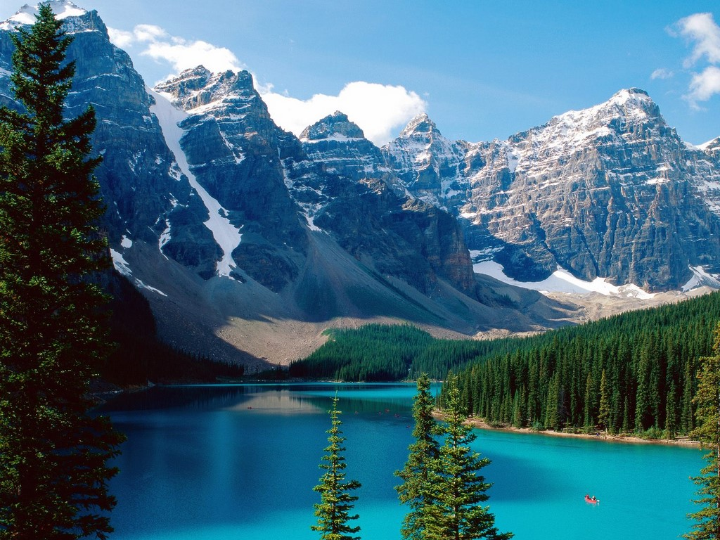 Covertress moraine lake banff national park canada