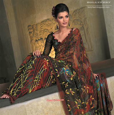 Beautiful Models in Sarees - 2010