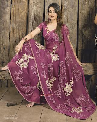 Beautiful Models in Sarees - 2010