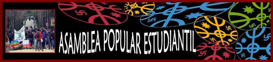 Asamblea Popular Estudiantil