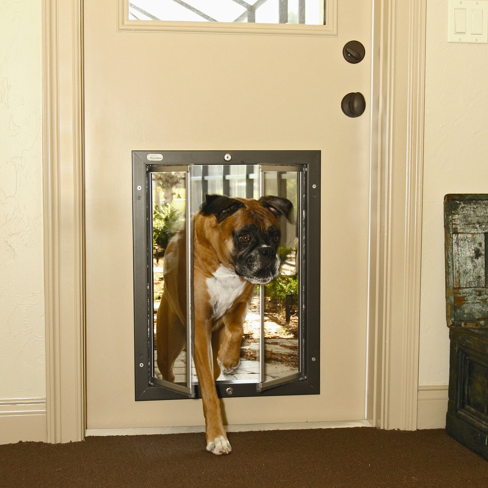 Dog Doors Dog And Owner Reprievepictures Of Dogs And All About Dog