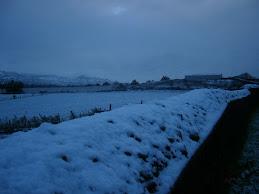 Chincolco con Nieve