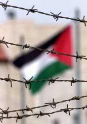 فلسطين أسيرة