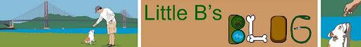 Little B's Blog