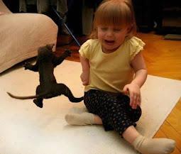 Ninja kitten Vs. Baby