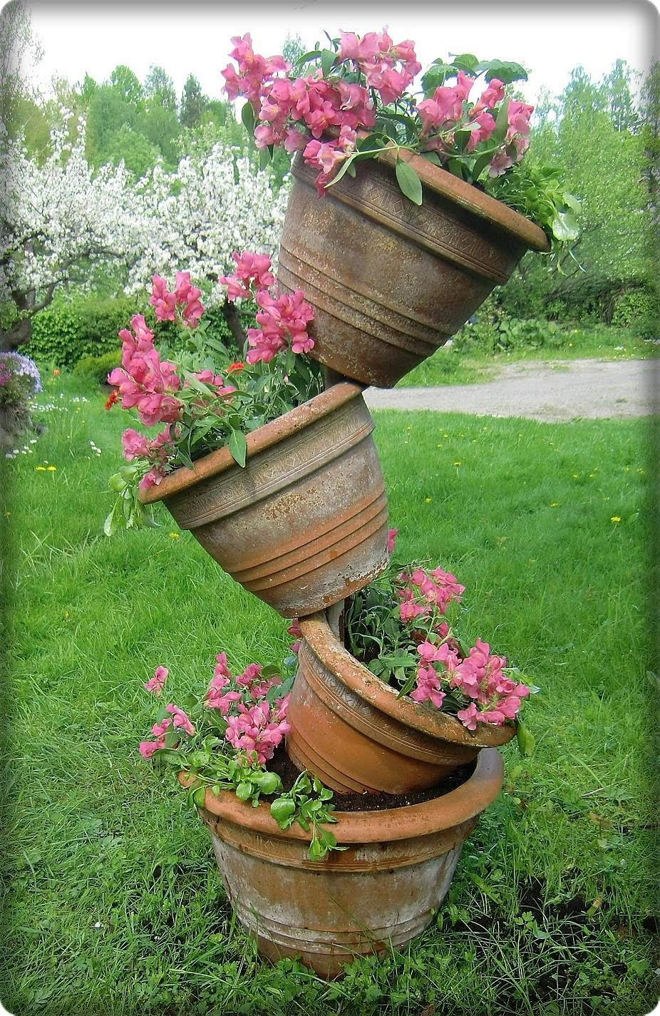 Blomster: Min Tipsy pot har fått blommor!