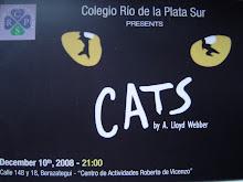 """""""CATS"""" 10 DE DICIEMBRE 21 HS"""