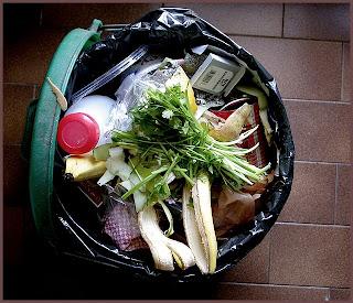 L'alimentation, fléau économique et écologique ?