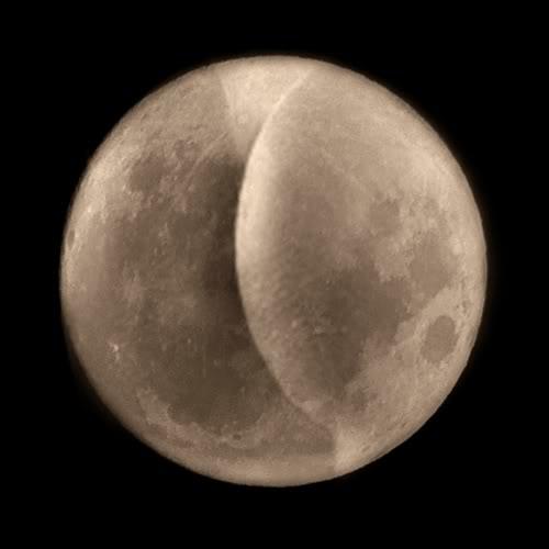 Moon Butt 53