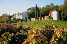 Domaine de Beausejour B & B, near Chinon
