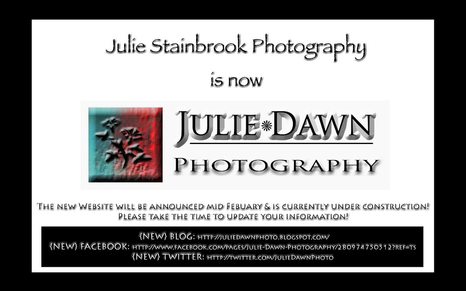 Julie Stainbrook Photography