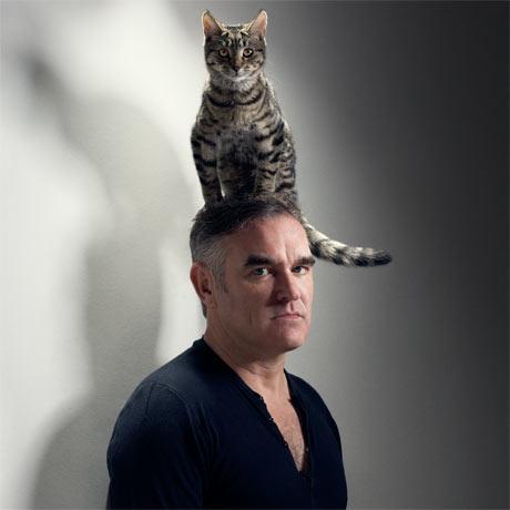 Catsparella Morrissey Viva Kitty – Morrissey Birthday Card