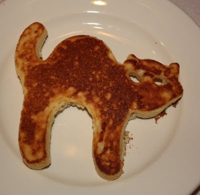 Pancake Cat