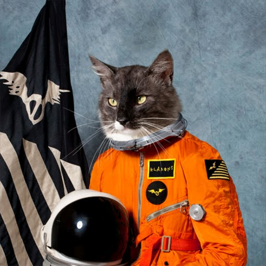 for the astronaut cat cover of their second album, Surfing The Void.