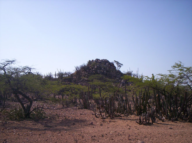 Escultura natural en IPAPURE