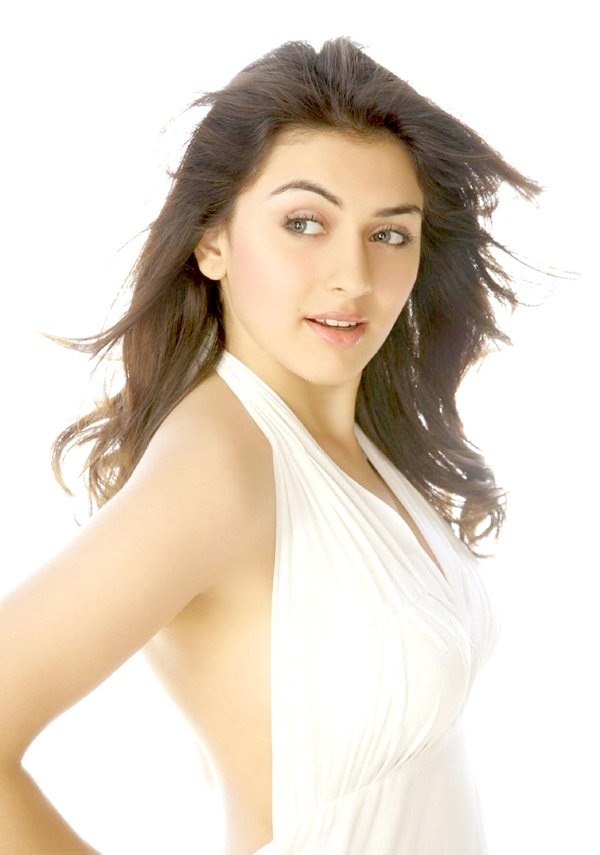 hansika motwani wallpaper. Hansika Motwani wallpapers