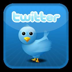 Twitter das Meninas