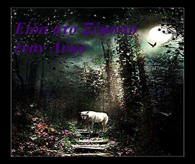 Είδα στο ξέφωτο έναν Λύκο