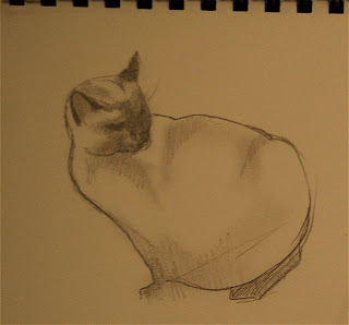 siamese cat drawing