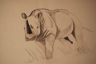 rhinoceros sketch in ink by Ophelia Keys