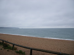 Torcross