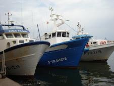 Proas de barcas